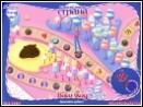 скачать игру Карамельная страна бесплатно (скриншот 2)