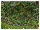 скачать игру Опасный круиз бесплатно (скриншот 2)