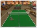 скачать игру Пинг-Понг бесплатно (скриншот 3)