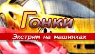 скачать Race Cars бесплатно (средняя))