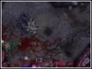 скачать игру Звездный Легион бесплатно (скриншот 2)